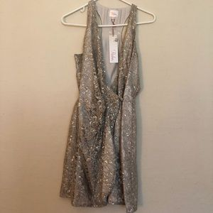 Parker Silver Lace Cocktail Dress Size S Brand New